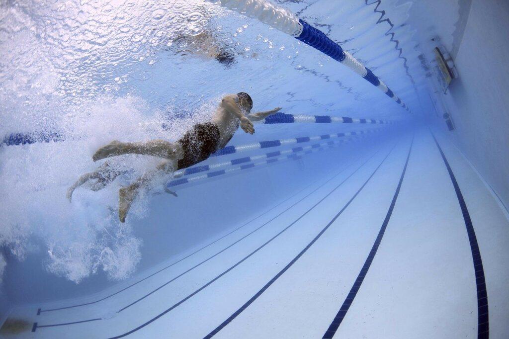 înotător